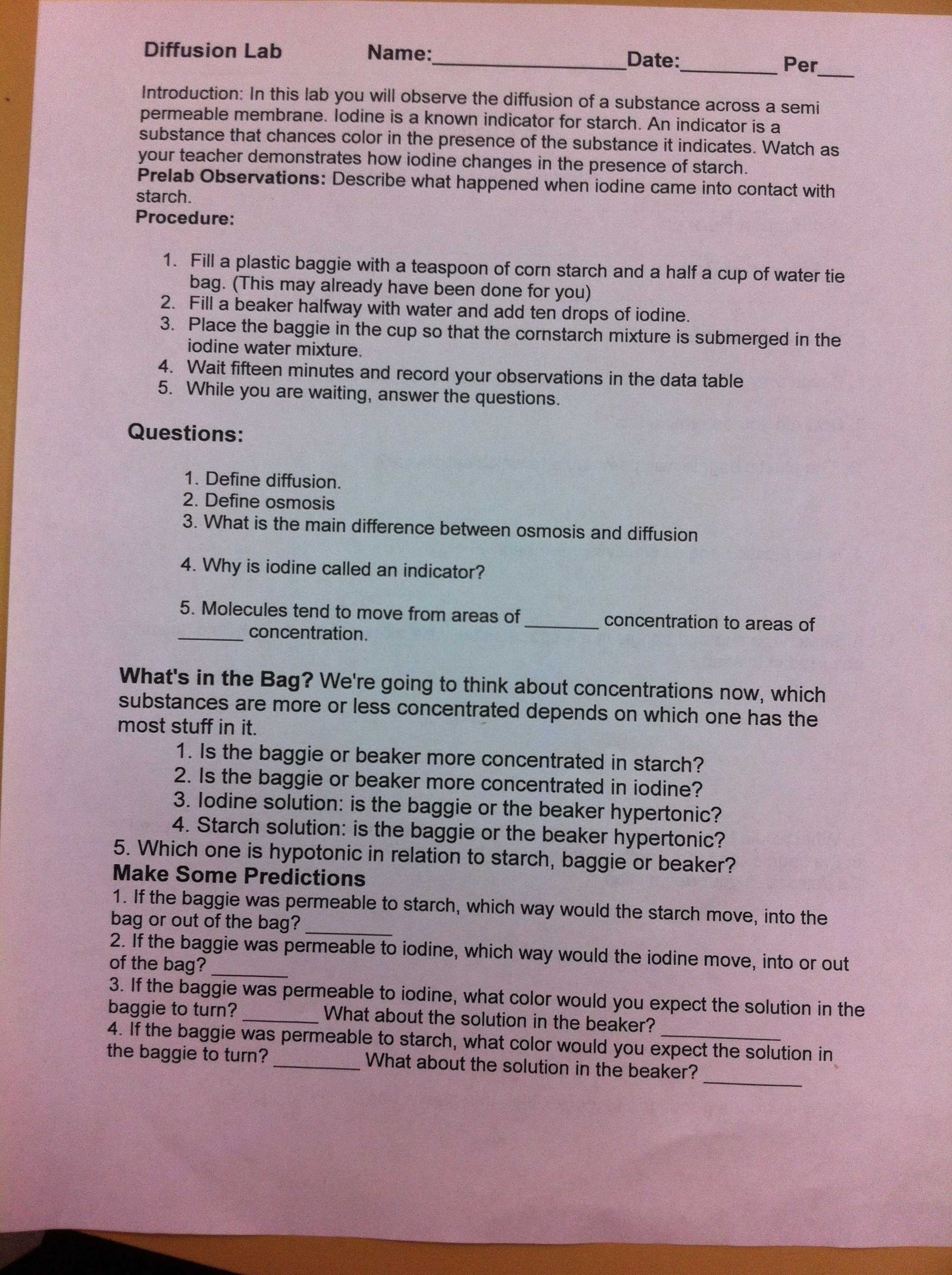 Rudys Work Rudy and Perez Biology – Active Transport Worksheet